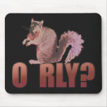 O RLY Squirrel Mousepads