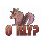 O RLY Squirrel Post Cards