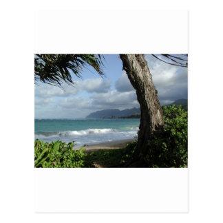 Oahu Beach Postcard