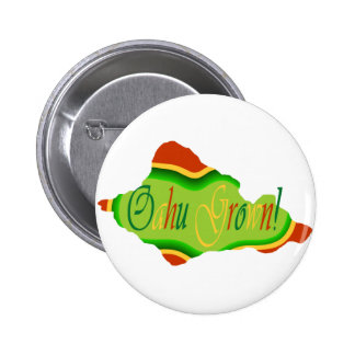 Oahu grown reggae colors button