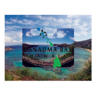 Oahu Island Turtle Postcard