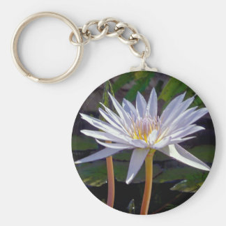Oahu Water Lily #2 Keychain