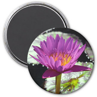 """Oahu WaterLily #1 -  magnet, 3"""" 3 Inch Round Magnet"""
