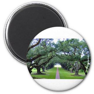 Oak Alley 2 Inch Round Magnet