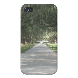 Oak Alley at Boone Hall, Charleston SC iPhone Case