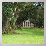 Oak Alley Plantation Print