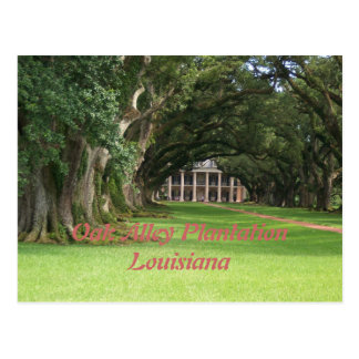 Oak Alley PlantationLouisiana Postcard