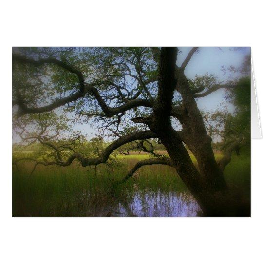 Oak and Coastal Marshlands Card
