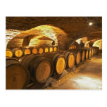 Oak barrles in the cellar at Domaine Comte Postcard
