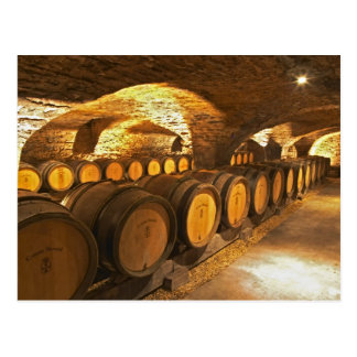 Oak barrles in the cellar at Domaine Comte Postcard