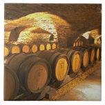 Oak barrles in the cellar at Domaine Comte Tiles