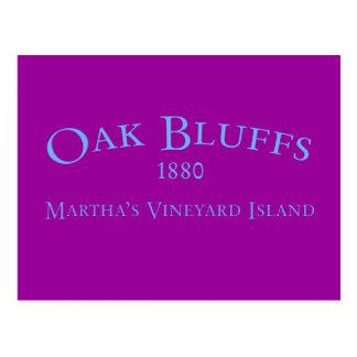 Oak Bluffs Incorporated 1880 Postcard