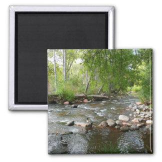 Oak Creek and Mallard Ducks Nature Photography 2 Inch Square Magnet