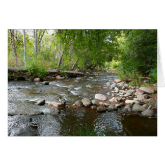 Oak Creek and Mallard Ducks Nature Photography Card