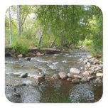 Oak Creek and Mallard Ducks Nature Photography Square Sticker