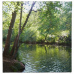 Oak Creek I in Sedona Arizona Nature Photography Napkin
