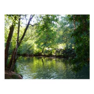 Oak Creek I in Sedona Arizona Nature Photography Postcard