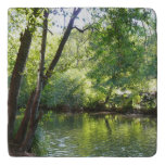Oak Creek I in Sedona Arizona Nature Photography Trivet