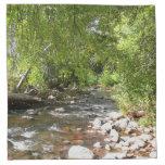 Oak Creek II in Sedona Arizona Nature Photography Cloth Napkin
