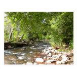 Oak Creek II in Sedona Arizona Nature Photography Postcard