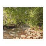 Oak Creek II in Sedona Arizona Nature Photography Wood Wall Art