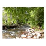 Oak Creek, Sedona Nature Postcard