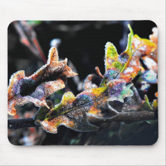 Oak Fairy Frosting Mouse Pad