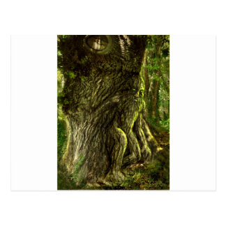 Oak Father Postcard