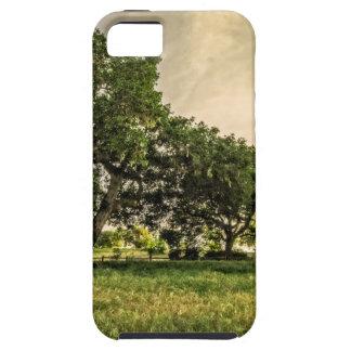 Oak Grove Sunset iPhone SE/5/5s Case