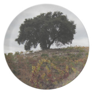 Oak in Autumn Vineyard Dinner Plates