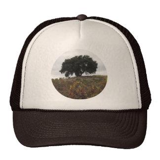Oak in Autumn Vineyard Trucker Hat