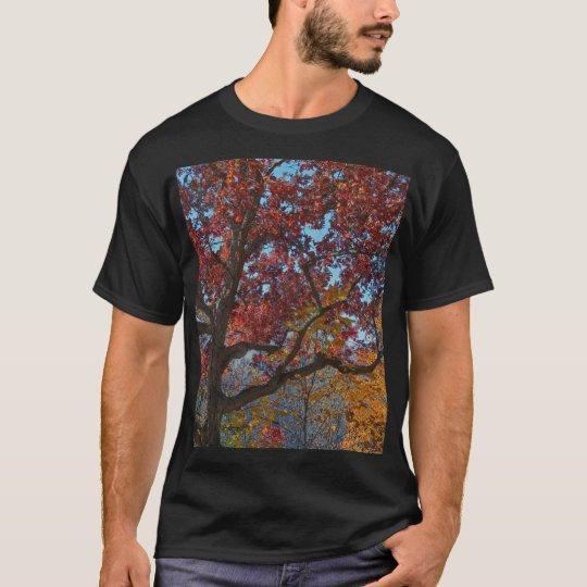 Oak in Foliage Tee Shirt