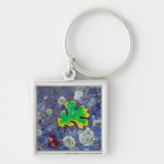 Oak Leaf and Acorns on a Lichen covered rock Keychain