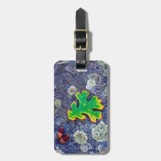 Oak Leaf and Acorns on a Lichen covered rock Luggage Tag