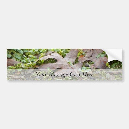 Oak Leaf and Chickweed Bumper Sticker