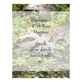 Oak Leaf and Chickweed Flyer