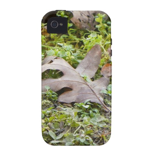 Oak Leaf and Chickweed Vibe iPhone 4 Case