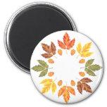 Oak Leaf Circle Fridge Magnets