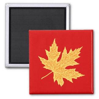 Oak leaf - deep red and saffron magnet