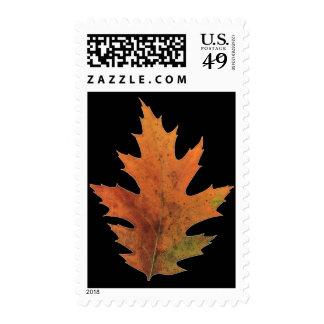 Oak Leaf for Thanksgiving Postage