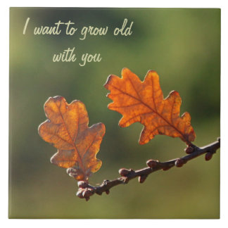 Oak Leaves Photography: 'Grow Old With You' Ceramic Tiles