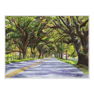 Oak Lined Road Poster