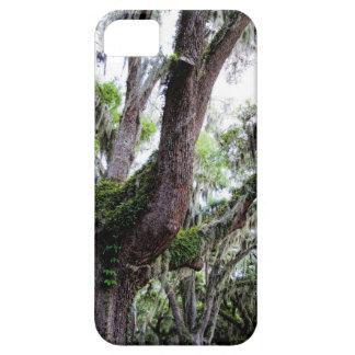 oak & mossGeorgia Live Oaks And Spanish Moss iPhone SE/5/5s Case