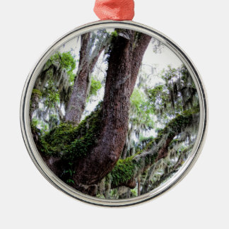 oak & mossGeorgia Live Oaks And Spanish Moss Metal Ornament