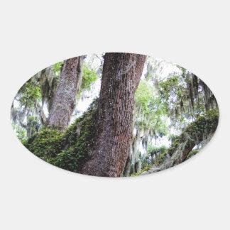 oak & mossGeorgia Live Oaks And Spanish Moss Oval Sticker