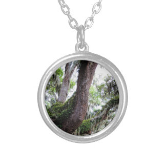 oak & mossGeorgia Live Oaks And Spanish Moss Silver Plated Necklace