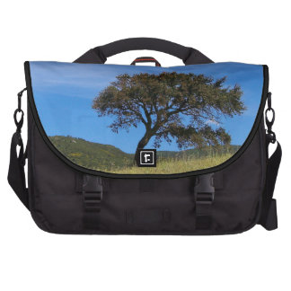 Oak (Quercus Suber) Laptop Bag