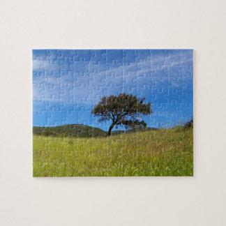 Oak (Quercus Suber) Puzzle