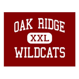 Oak Ridge - Wildcats - High - Oak Ridge Tennessee Postcard