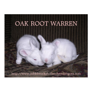 OAK ROOT WARREN RABBITREE POST CARD